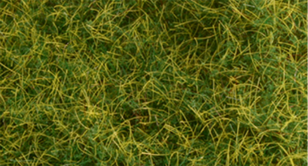"Pull-Apart 6mm Static Grass - Wild Grass (one 11"" X 5.5"" sheet)"